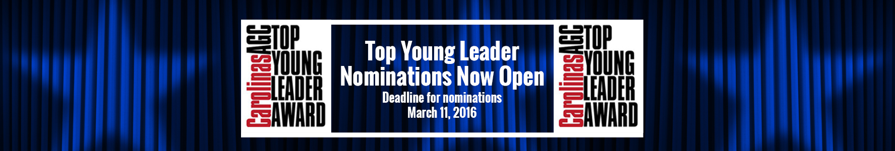Top Young Leader Awards